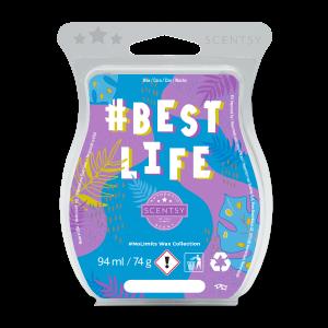#Bestlife Scentsy Bar
