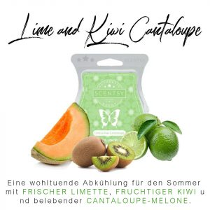 Lime & Kiwi Cantaloupe Scentsy Bar