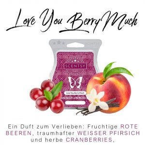 Love You Berry Much Scentsy Bar