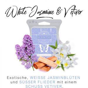 White Jasmine & Vetiver Scentsy Bar