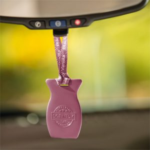 Black Raspberry Vanilla Scentsy Car Bar