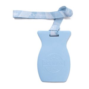 Clothesline Scentsy Car Bar