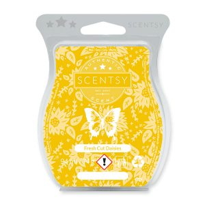 Fresh Cut Daisies Scentsy Bar