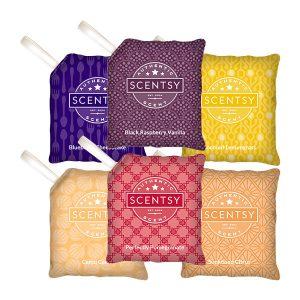 6 Scent Paks Scentsy Set