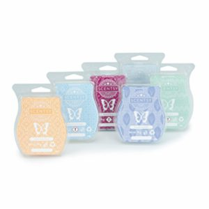 6 Scentsy Bars Scentsy Set