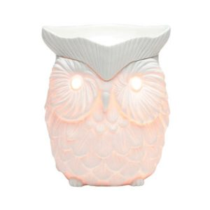 Whoot Scentsy Duftlampe