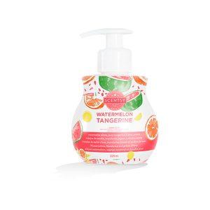 Watermelon Tangerine Scentsy Handseife