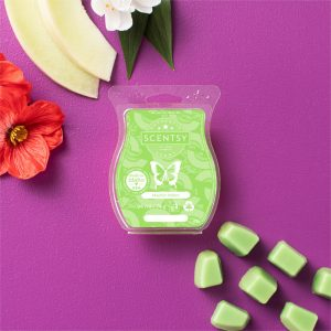 Mad for Melon Scentsy Bar