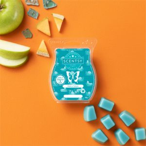 Make a Splash Scentsy Bar